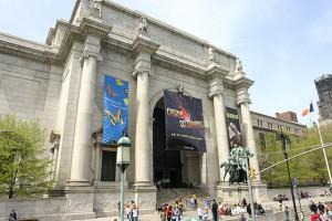 Goedkoop Museum of Natural History bezoeken